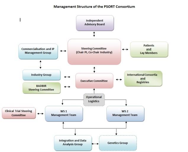 Governance Structure - PSORT